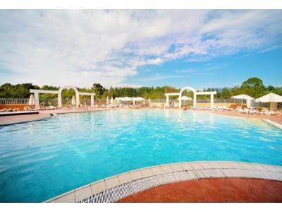 Пансионат Самшитовая роща Пицунда| Открытый бассейн