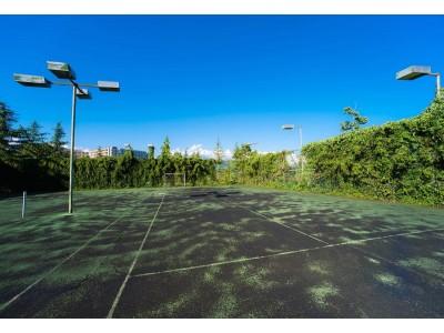 Пансионат Самшитовая роща Пицунда| Теннисный корт